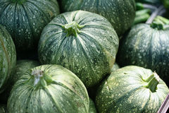Striped Green melons for sale Royalty Free Stock Image