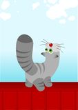 Striped grey cat. On red roof Vector Illustration