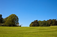 Striped lawn Stock Photography