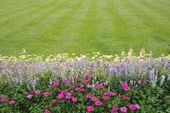 Striped lawn with border Stock Photography