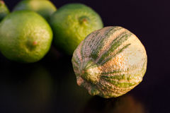 Striped lemon and limes Royalty Free Stock Photo