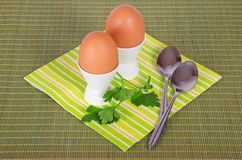 Striped napkin, boiled egg and spoon Royalty Free Stock Photos