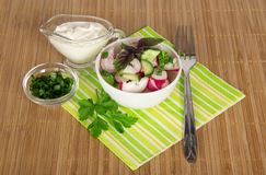 Striped napkin, salad and cup with sour cream Royalty Free Stock Images