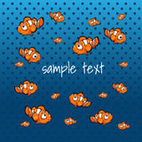 Striped orange fish on a blue background. Striped orange fish on the background color of the sea with space for text Royalty Free Stock Photo