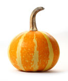 Striped Orange Pumpkin isolated Royalty Free Stock Photography