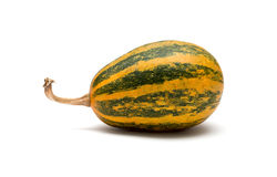 Striped ornamental pumpkin Stock Photography