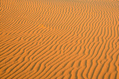 Striped pattern on a sand dune. Soft focus Stock Photos