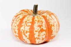 Striped pumpkin. On white background Stock Photo