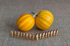 Striped pumpkin behind toy wooden fence. The Stock Photo