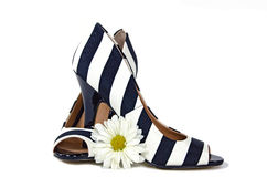 Striped pumps with daisy Royalty Free Stock Image
