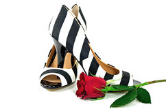 Striped pumps with red rose Royalty Free Stock Photos
