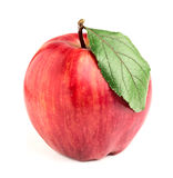Striped red and yellow apple with leaf. Royalty Free Stock Photo