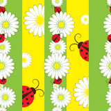 Striped seamless pattern with ladybirds Royalty Free Stock Photo