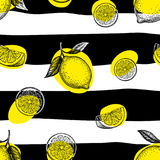 Striped seamless pattern with lemons. Striped seamless pattern with hand drawn lemons. Summer background Stock Image