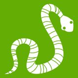 Striped snake icon green. Striped snake icon white isolated on green background. Vector illustration Stock Image