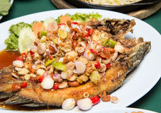 Striped snakehead fish with Spices Royalty Free Stock Image
