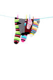Striped socks. Colorful striped socks hanging on a white background Royalty Free Stock Photography