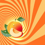 Striped spiral apricot patisserie background. Stock Image