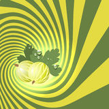 Striped spiral goosberry patisserie background. Royalty Free Stock Image