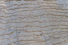 Striped stone texture. For background Stock Images