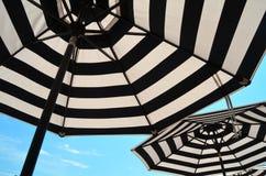 Striped Umbrellas Stock Photography