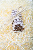 Striped waffles rolls with chocolate tied tourniquet lying on st. Raw Stock Images