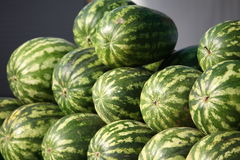 Striped watermelons Stock Photo