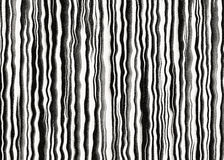 Striped zebra fell backgrounds Royalty Free Stock Image