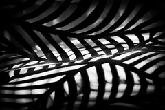 Stripes. Abstract composition with a pieces of carved paper makes interesting light and shadow rythm Royalty Free Stock Images
