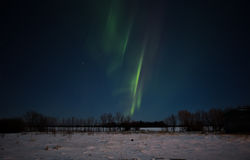 Stripes of aurora borealis in night sky Royalty Free Stock Images