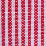 Stripes  fabric closeup , tablecloth texture. Blue  and red  stripes  fabric closeup , tablecloth texture Stock Images