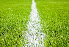 Stripes on grass. Soccer or football stripes on beautiful green grass Stock Photos