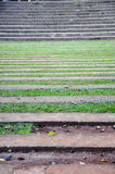 Stripes of grass and steps Stock Photos