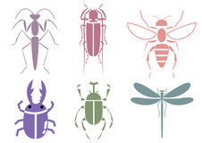 Stripes Insekt Lizenzfreies Stockfoto