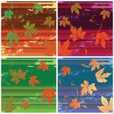 Stripes and leaves Royalty Free Stock Photography