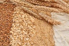 Stripes of oatmeal flakes, grain, wheat germ and white flour ear Stock Photos