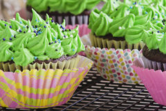 Stripes and polka dot cupcakes. Delicious cupcakes with green frosting and sprinkles Royalty Free Stock Photos