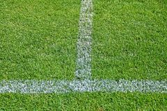 Stripes of the soccer field. O stock photos