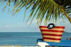 Stripey czerwona torba pod palmowym frond obrazy stock