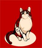 Stripped cat over red background Royalty Free Stock Photos
