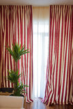 Stripped curtains Stock Photography