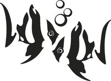 Stripped tropical fishes with bubbles in front of each other. Two black and white strippes tropical fishes in front of each other with bubbles hand drawing stock illustration