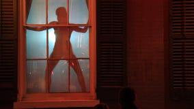 Stripper Silhouette 2 stock video