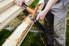Stripping planks from the bark Royalty Free Stock Photos