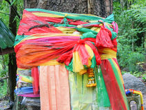 Strips of different colored fabric ribbons decorate a bodhi tree Stock Photos