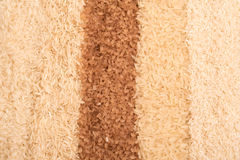 Strips of different rice Royalty Free Stock Photo