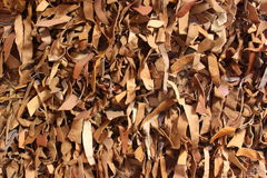 Strips of leather Royalty Free Stock Image