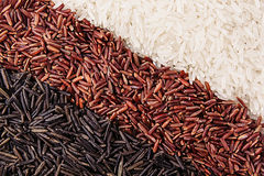 Strips of red, black and white rice close-up. Rice texture background. Macro Stock Photo