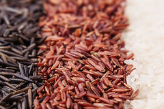Strips of red, black and white rice close-up. Rice texture background. Macro Stock Photography