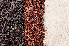 Strips of red, black and white rice close-up. Rice texture background. Macro Royalty Free Stock Image